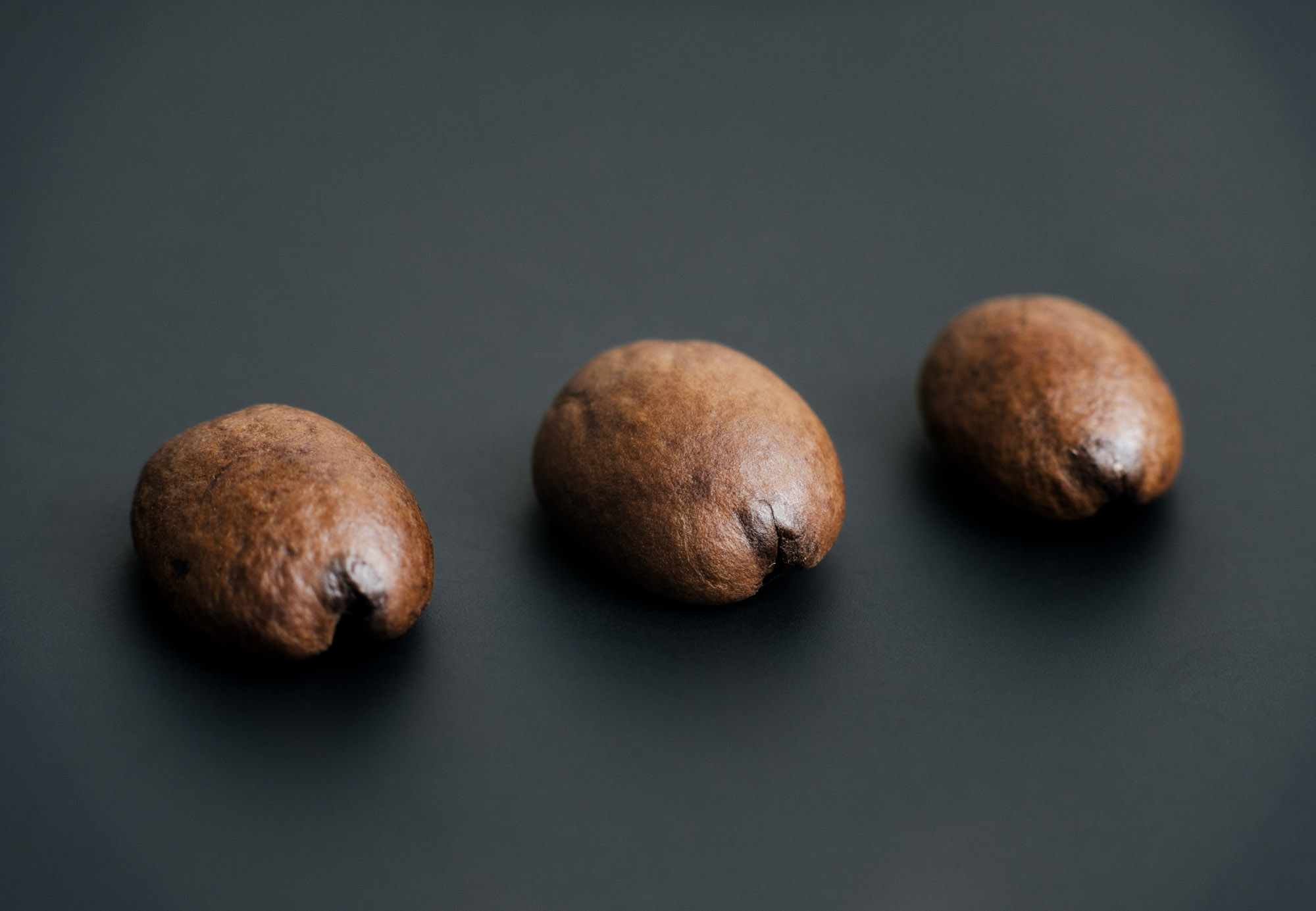 coffee beans with a dark spot on their tips